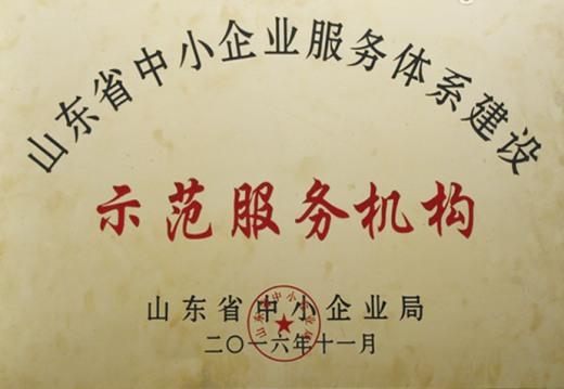 山东省中小企业服务体系建设示范服务机构